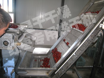 红枣专用烘干机